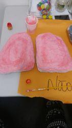 Estrutura confeccionada dos pulmões do ser humano